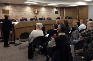 penny in voice public comment